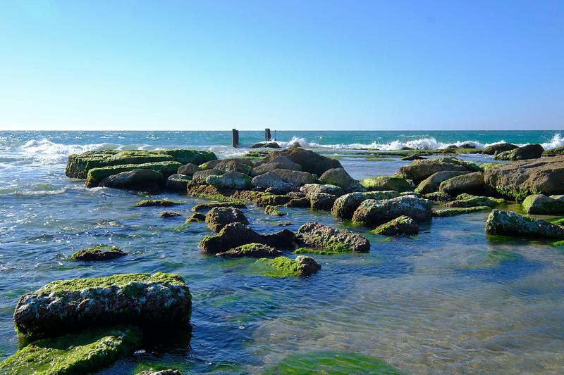 Palmachim  seashore