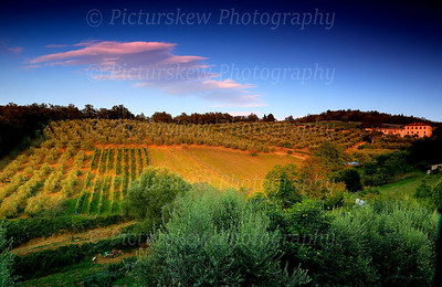 Countryside View - Tuscany