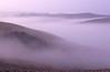 Sienese Mist