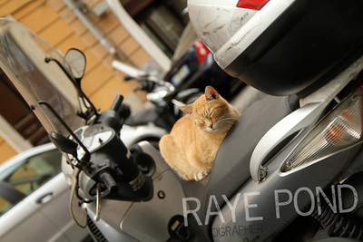 Lazy afternoon on a moped.