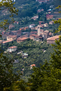 Gargnano through the trees vertical