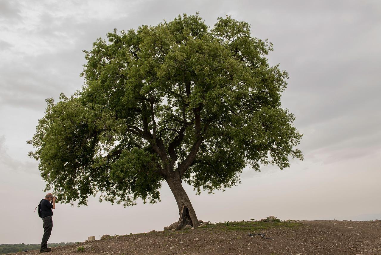 IzraEl Valley - Israel