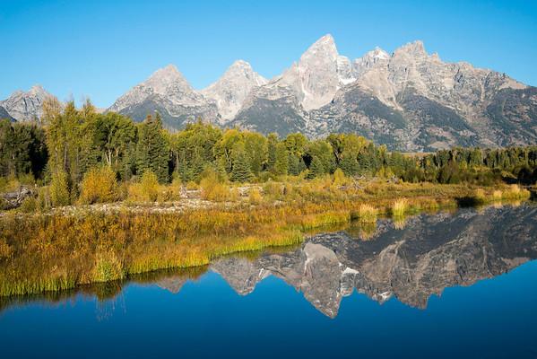 Jackson Hole and Yellowstone Fall 2013