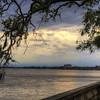 Photos taken while walking along the St. John's River in Jacksonville, Florida.