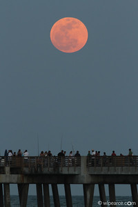 May Super-Moon over the Jax Beach Pier. Get notifications via: