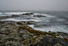 Poor visibility, Beavertail State Park, Jamestown, Rhode Island, on the rocks.