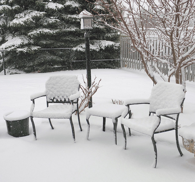 First day of 2008.......woke up to a beautiful snowy winter wonderland.......