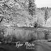 16  G Lewisville Park Snow BW