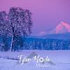 37  G Hood Snowy Sunset Alpenglow