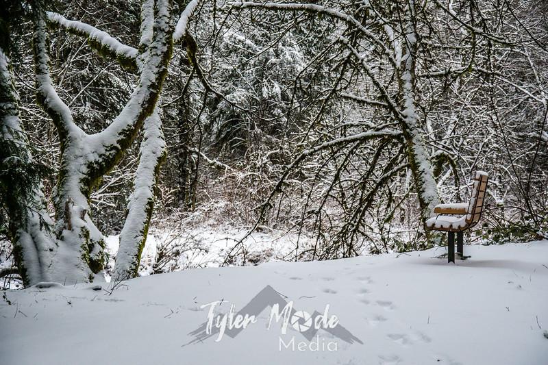 8  G Lewisville Park Snow Bench