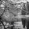 22  G Lewisville Park Snow BW