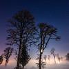 91  G Moon, Snow and Fog Battle Ground V