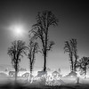 73  G Moon, Snow and Fog Battle Ground BW