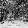 32  G Lewisville Park Snow Road BW