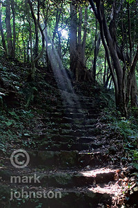 A shaft of sunlight illuminates stony steps on the east coast of the Izu Peninsula, Shizuoka Prefecture, Japan.