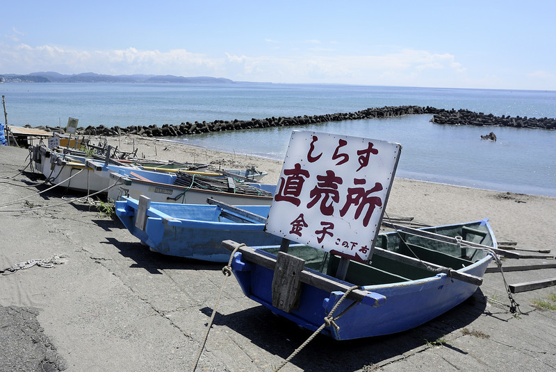 Shirasu are small fish that are highly prized for their delicate taste. The Kaneko family operates a small fish business right on the beach in Koshigoe in Kamakura.