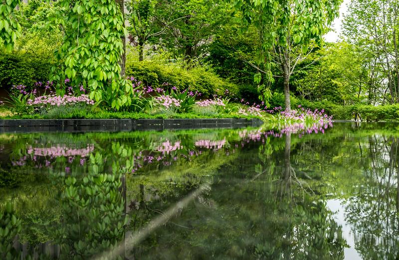 Osaka pond and garden, Japan