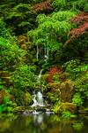 """Tranquil Falls"""