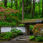 """Entrance to the Japanese Zen Garden""  Peaceful, Tranquil place to enjoy nature at its best!"