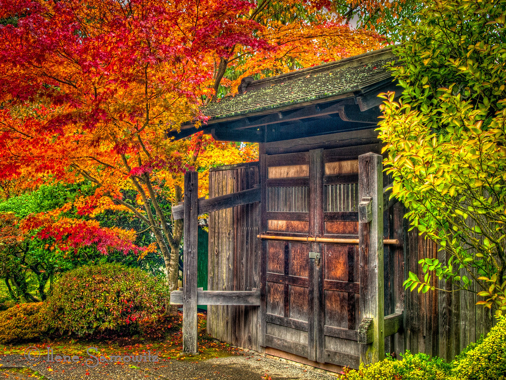 11-26-12 Weathered Shed- this was taken at the Seattle Japanese Garden<br /> <br /> Critiques  Welcome.<br /> <br /> Thanks for all the support and comments.