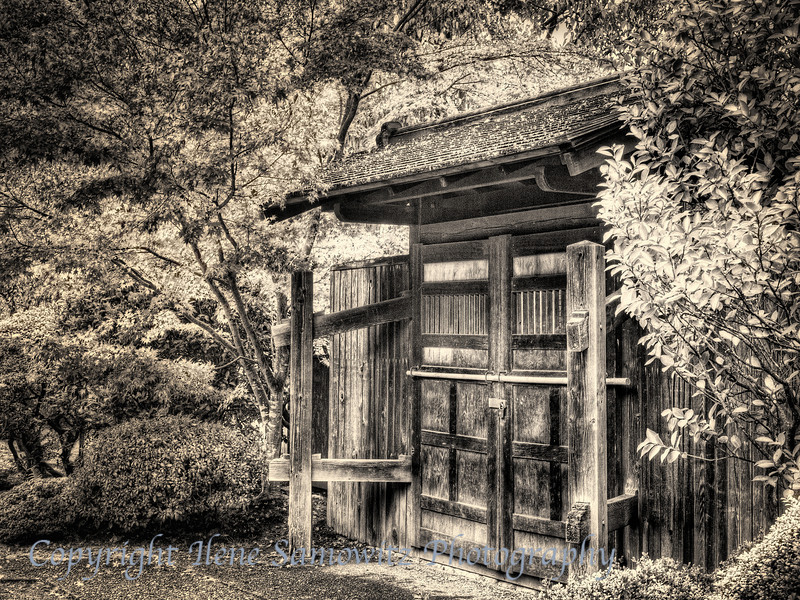 Weathered Shed in Black and White