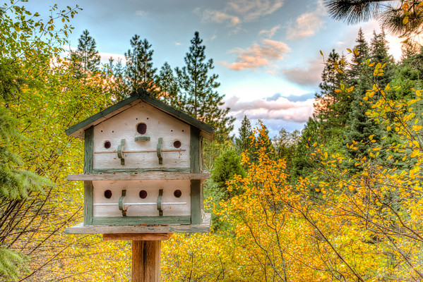 Bird House at Sunset