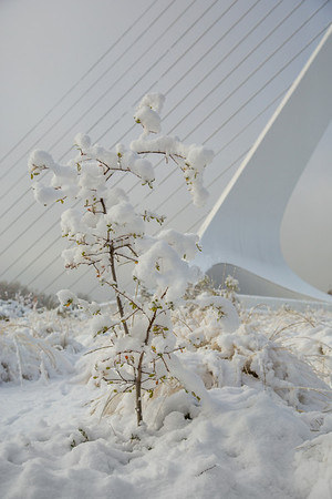 Sundial Bridge and Snow Vertical