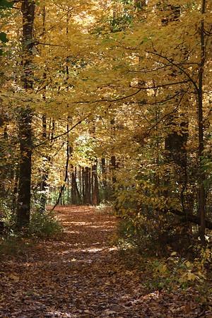 John Bryan State Park, OH
