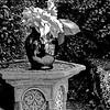 """""""Jeanne's Garden"""" - Philadelphia, PA"""