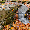 Autumn Torrent - Upper Black Eddy, PA