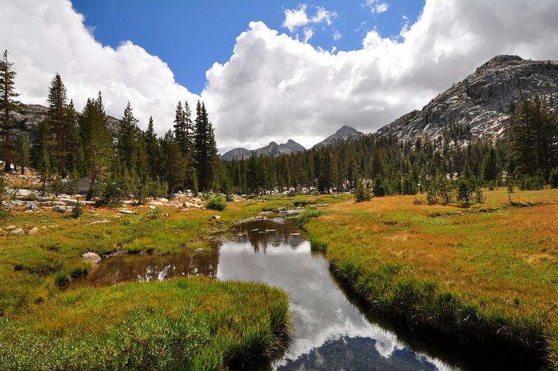 Upper Bear Creek Meadow, John Muir Wilderness.