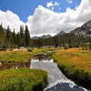 Upper Bear Creek Meadow, John Muir Wilderness.