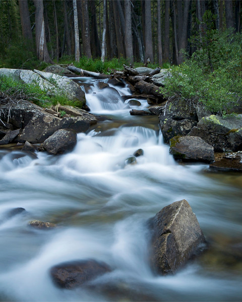 Piute Canyon, John Muir Wilderness
