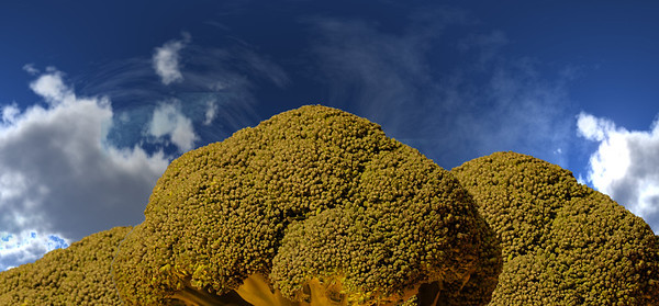 Lindeijer_2012-10-07_204306_sky