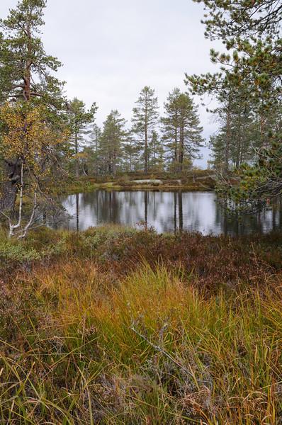 Lindeijer_2012-09-16_120536