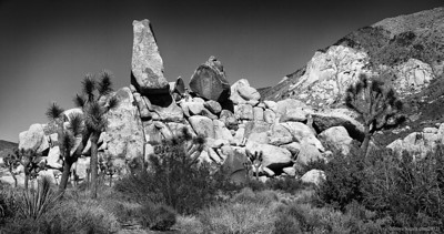 The headstone at Joshua Tree National Park.  Ryan campground