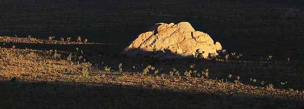 Golden Granite Panorama Joshua Tree