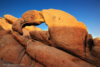 Lobster Claw Arch Joshua Tree National Park  Joshua Tree is famous for it's otherworldly trees scattered amongst some very unique boulder formations. These piles and piles of rocks are almost endless it's not a wonder why people often get lost in the maze of monzogranite. Curiosity makes you wonder what you can find in the sea of rocks. This arch probably doesn't have an official name but some climber friends call it Lobster Claw Arch and the name is well suited to it's shape. I spent a little bit of time scrambling through the boulders to find it so it was well worth enjoying in the warm light. Sometimes it's the little things you can find off the beaten path that keep you searching for more to photograph. We all love the icons but it's the lure of new things that pushes me to keep searching for something I haven't seen yet.