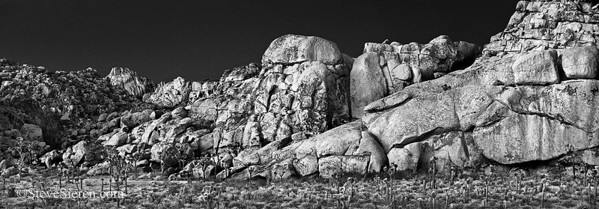 Achilles Heal - Joshua Tree Panorama