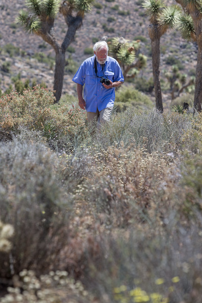 David Muench looking for another great photograph at Joshua Tree.