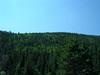 back yard hills