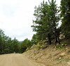 chorten ling road