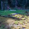 26  G June Lake
