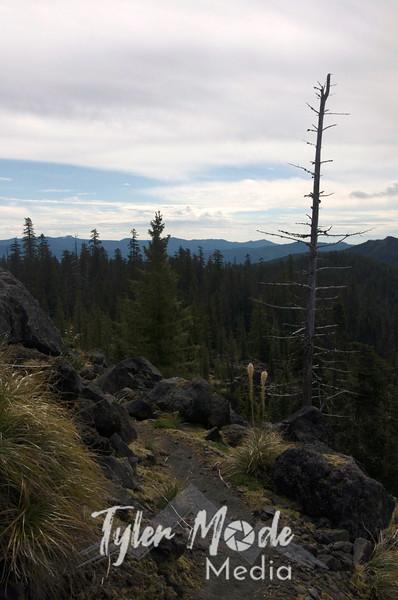 108  G Trail and Snag V