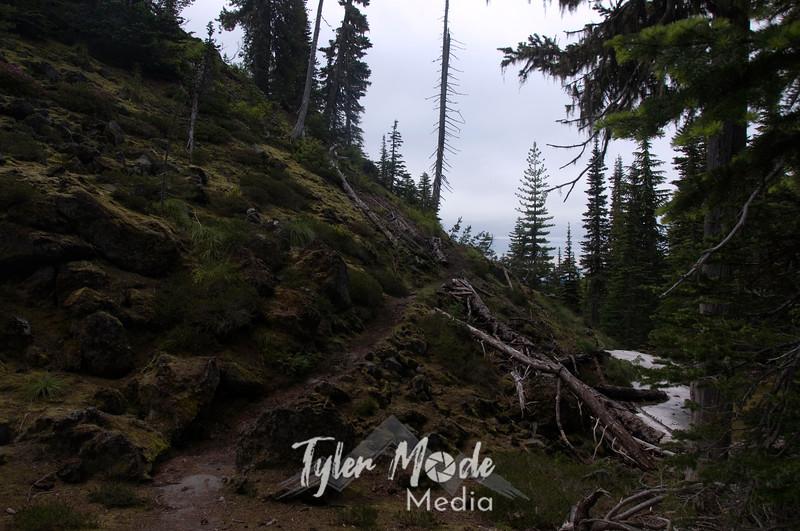 126  G Trail Near Chocolate Falls