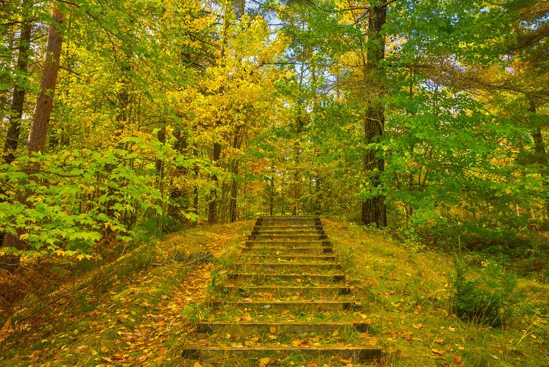 A Stairway To Autumn