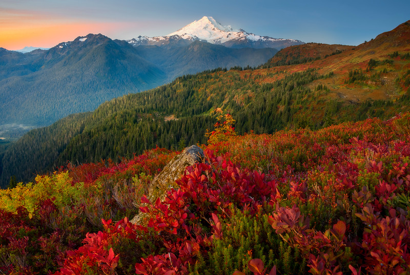 Mt Baker And Fall Color Valleys Near Sunrise - North Cascades National Park, WA