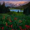 Mount Rainier From Lower Tipsoo Lake - Tipsoo Lake, Mt Rainier NP, WA