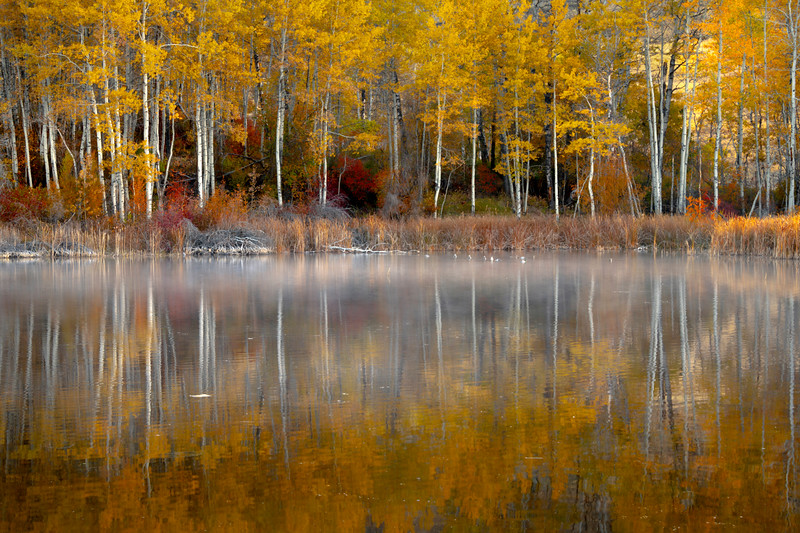 Painterly Look At Autumn In Methow Valley - Methow Valley, Washington State