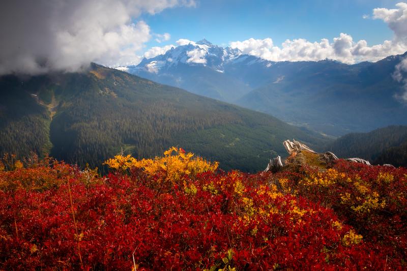 Peak Of Reds Overlooking Mt Shuksan - North Cascades National Park, WA